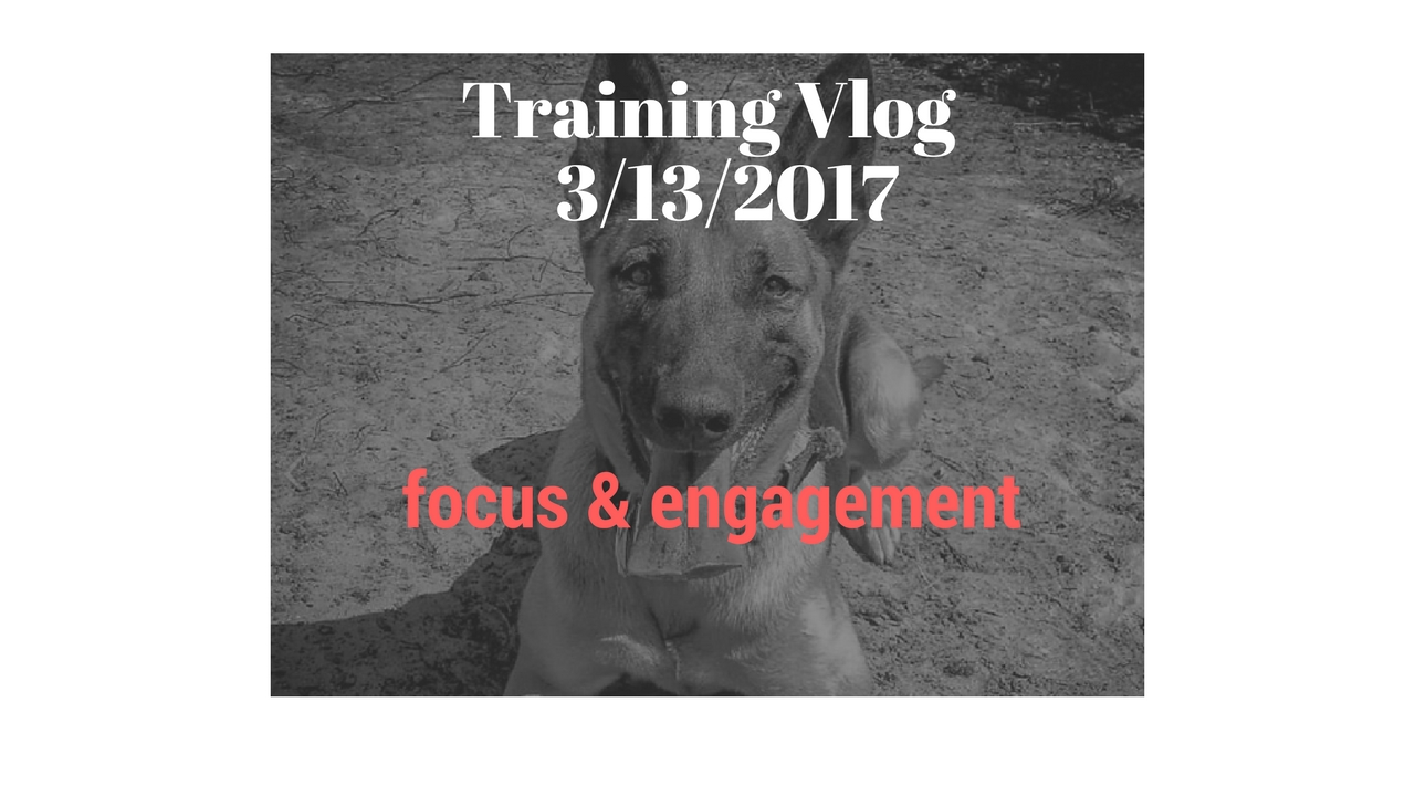 Training Vlog 3/13/17 – More Focus & Engagement