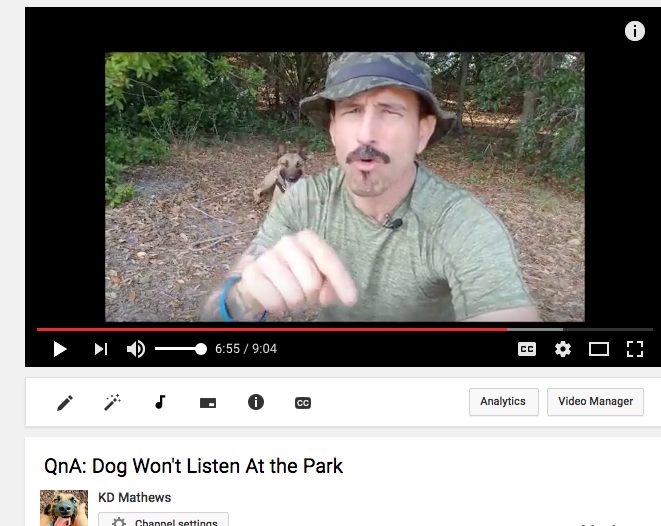 New YouTube Video:  Q&A Why Won't My Dog Listen At The Park?